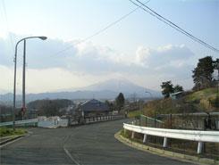 Mituwari