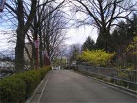 Iwatekouen